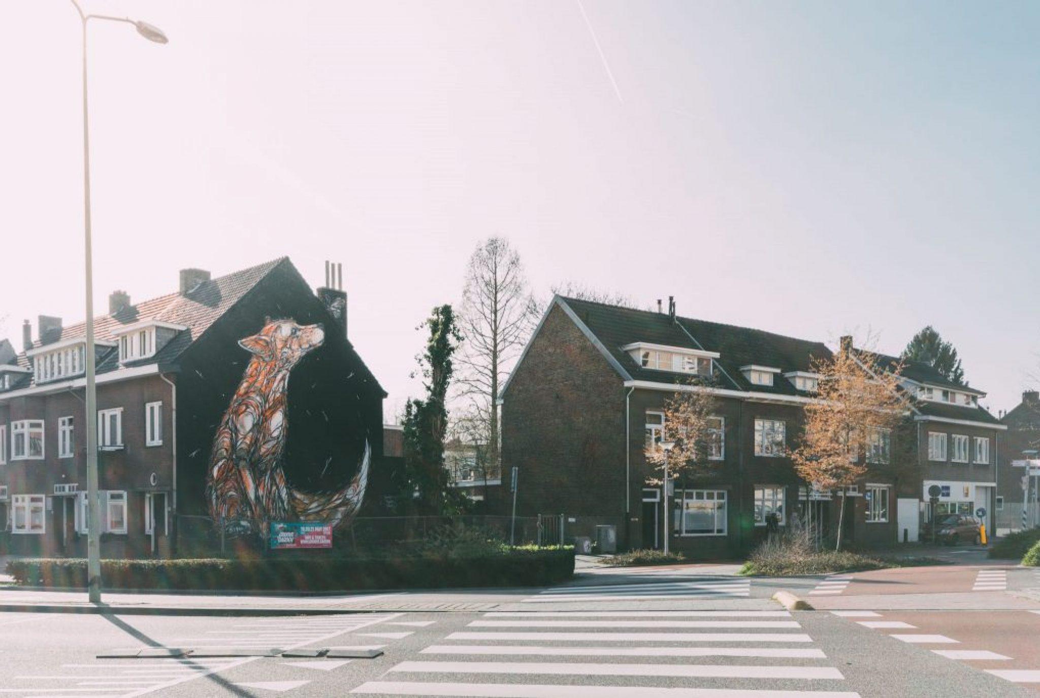 Roadtrip Maastricht & Zuid Limburg #1