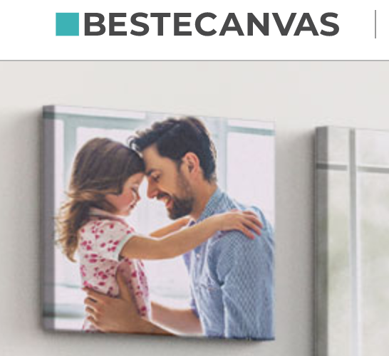 You are currently viewing Review: bestecanvas.nl (Dutch)
